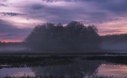 Lever de soleil brumeux au lac Photographie stock