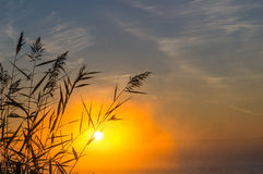 Lever de soleil brumeux sur le lac, Russie, Ural Image libre de droits