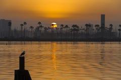 Lever de soleil côtier Photo libre de droits