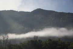 Lever de soleil chaud et arbre de montagne avec le brouillard pendant le matin chez Thaila Image stock
