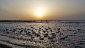 Lever de soleil chez la Mer Noire Photographie stock libre de droits