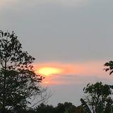 Lever de soleil chez Phu Rua, Loei, Tha?lande photo libre de droits