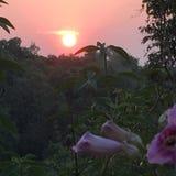 Lever de soleil chez Phu Rua, Loei, Tha?lande image libre de droits