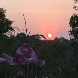 Lever de soleil chez Phu Rua, Loei, Tha?lande images libres de droits