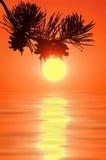 Lever de soleil coloré. Photos libres de droits