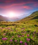 Lever de soleil coloré d'été dans les montagnes caucasiennes Photos libres de droits