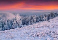 Lever de soleil coloré d'hiver en montagnes Image libre de droits