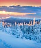 Lever de soleil coloré d'hiver en montagnes Images libres de droits