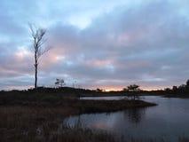 Lever de soleil coloré dans le marais d'Aukstumalos, Lithuanie Photographie stock libre de droits