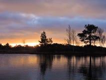 Lever de soleil coloré dans le marais d'Aukstumalos, Lithuanie Photographie stock