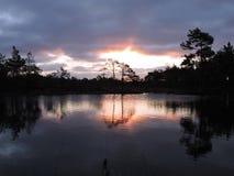 Lever de soleil coloré dans le marais d'Aukstumalos, Lithuanie Image libre de droits