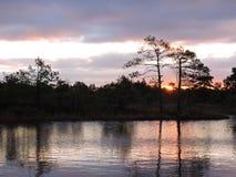 Lever de soleil coloré dans le marais d'Aukstumalos, Lithuanie Images libres de droits