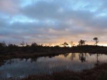 Lever de soleil coloré dans le marais d'Aukstumalos, Lithuanie Image stock