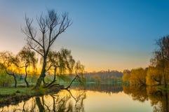 Lever de soleil coloré en parc Photo stock
