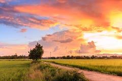 Lever de soleil crépusculaire de temps Photographie stock libre de droits