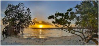 Lever de soleil de début de la matinée au parc indien 1 de rivière photo stock
