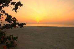 Lever de soleil d'île des Maldives Image stock