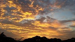 Lever de soleil d'or Image libre de droits