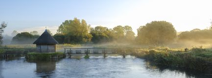 Lever de soleil d'automne avec la brume sur les pi?ges de Chambre d'anguille sur l'essai de rivi?re pr?s de Longstock, Hampshire, image stock