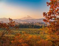 Lever de soleil d'automne regardant au-dessus des vergers et des vignobles avec le capot de Mt dans la distance semblant du sud v photo stock