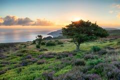 Lever de soleil d'Exmoor Photographie stock