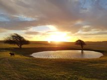 Lever de soleil d'hiver au-dessus d'étang de rosée de balise de Ditchling Photographie stock libre de droits