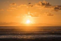 Lever de soleil dans Florianopolis Photographie stock libre de droits