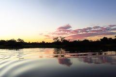 Lever de soleil dans la jungle Photo libre de droits