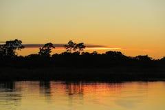 Lever de soleil dans la jungle Images libres de droits