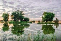 Lever de soleil dans la réflexion d'oasis dans le lac image libre de droits