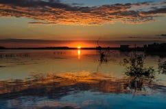 Lever de soleil dans le delta de Danube Photographie stock libre de droits