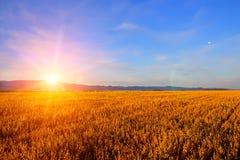 Lever de soleil dans le domaine photos libres de droits