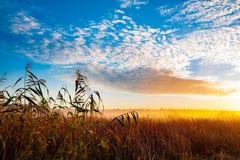 Lever de soleil dans le domaine photographie stock libre de droits