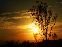 Lever de soleil dans le paradis Images libres de droits