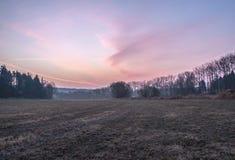 Lever de soleil dans le paysage tôt de ressort Images libres de droits