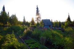Lever de soleil dans le village d'été photo libre de droits