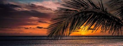 Lever de soleil dans les Caraïbe, les nouveaux débuts de jour images libres de droits