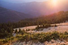 Lever de soleil dans les montagnes Image libre de droits
