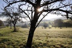 Lever de soleil dans les montagnes de Taunus Photographie stock libre de droits