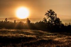 Lever de soleil dans les montagnes de Jizera photo libre de droits