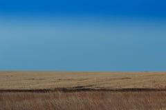 Lever de soleil dans les steppes Photographie stock libre de droits