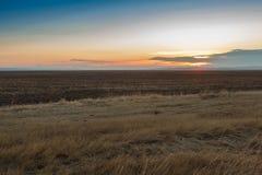 Lever de soleil dans les steppes Photos stock