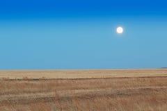 Lever de soleil dans les steppes Image stock