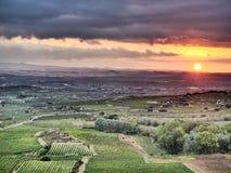 Lever de soleil dans Rioja avec une finition impressionniste photo libre de droits