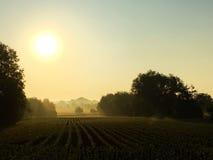 Lever de soleil dans un Allemand rural avec le brouillard Photo stock