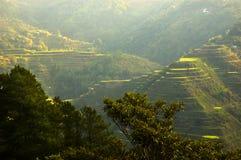 Lever de soleil de Banaue Image stock