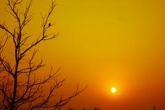 Lever de soleil de début de la matinée Photos stock