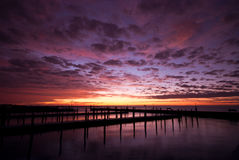 Lever de soleil de dock Images libres de droits