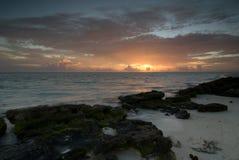 Lever de soleil de héron Photographie stock libre de droits