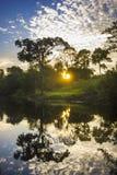 Lever de soleil de jungle sur le fleuve Amazone avec la réflexion dans l'eau Photo stock
